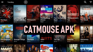 CatMouse