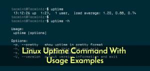 uptime (Best Linux server commands)